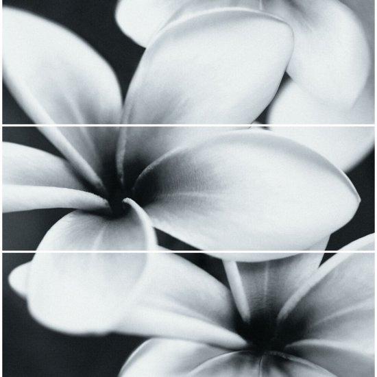 Płytka ścienna PRET A PORTER szara kwiaty kompozycja błyszcząca 75x75 gat. I