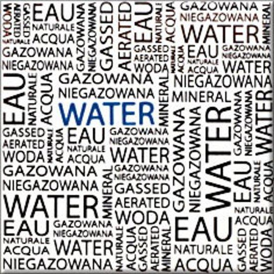 Płytka ścienna MONTANA biała inserto water błyszcząca 10x10 gat. I