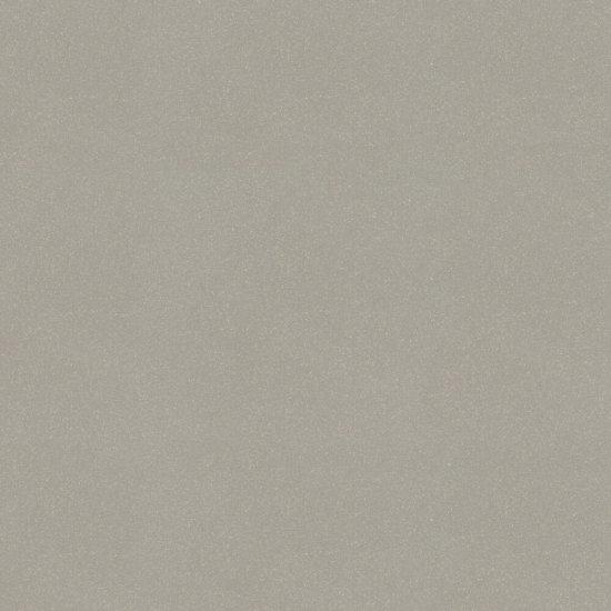 Gres zdobiony MOONDUST jasnoszary poler 59,4x59,4 gat. II*