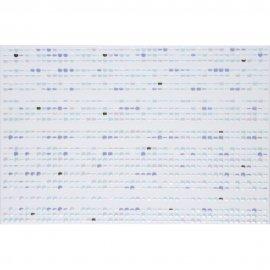 Płytka ścienna ATOLA niebieska inserto koraliki błyszcząca 30x45 gat. I
