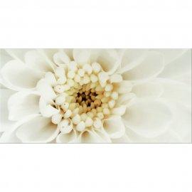 Płytka ścienna DIAGO beżowa flower B inserto błyszcząca gat. I