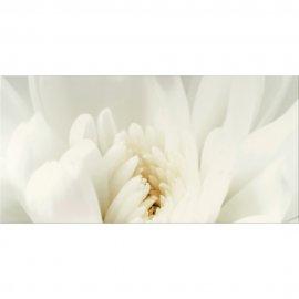 Płytka ścienna DIAGO beżowa flower C inserto błyszcząca gat. I