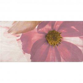 Płytka ścienna STONE ROSE multikolor inserto kwiaty A błyszcząca 29,7x60 gat. I