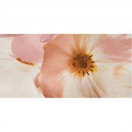 Płytka ścienna STONE ROSE multikolor inserto kwiaty B błyszcząca 29,7x60 gat. I