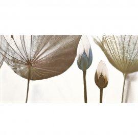 Płytka ścienna MODENA szara inserto kwiaty błyszcząca 29,7x120 gat. I