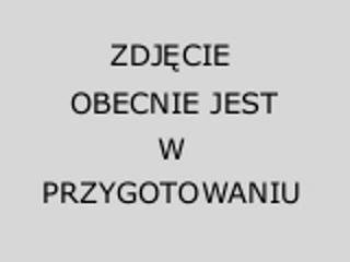 """Przejściówka 1/2"""" BSP na M16 DeWALT"""