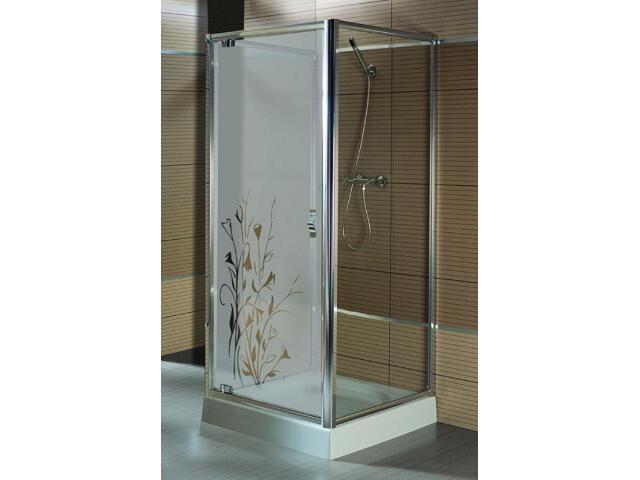 Drzwi prysznicowe SALGADO 100 do kabiny trójściennej szkło wzór lewe 103-06097 Aquaform