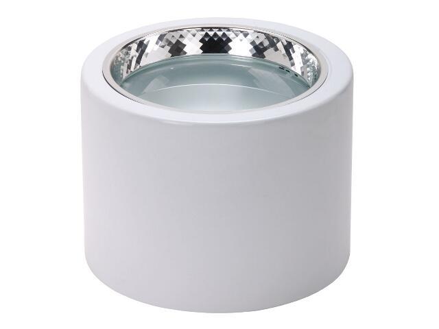 Oprawa downlight DLN 241 2x18W biała Lena Lighting