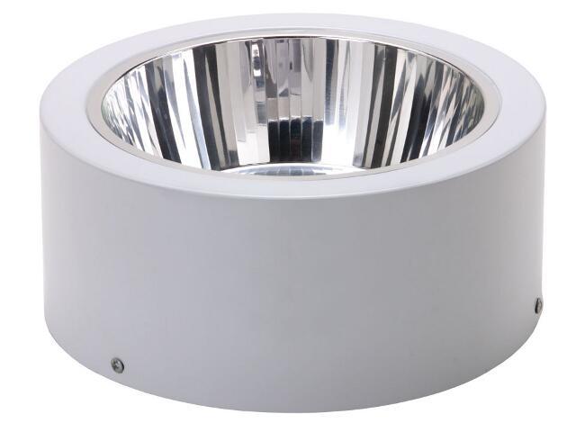 Oprawa downlight DLN 245 2x18W szara Lena Lighting