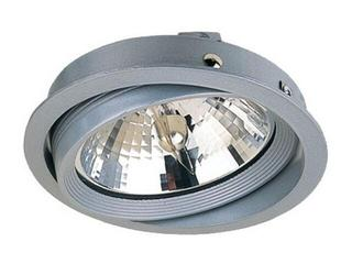 Oprawa downlight COMB-IN 100W G53 Lena Lighting