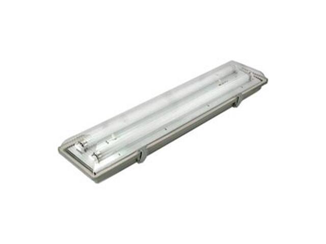 Oprawa świetlówkowa z kloszem pyłoszczelna 2x18W T8 3901A szara ANS