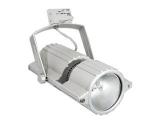Naświetlacz halogenowy SCENA PS20 70W srebrny Brilum