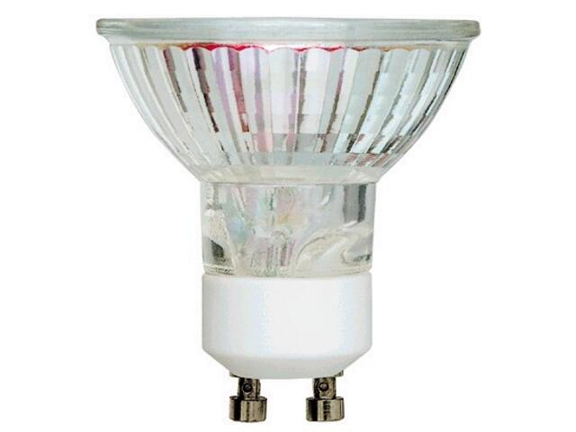 Żarówka halogenowa Start kolor fi50mm 50W Q50 240/FL START 12998 GE Lighting