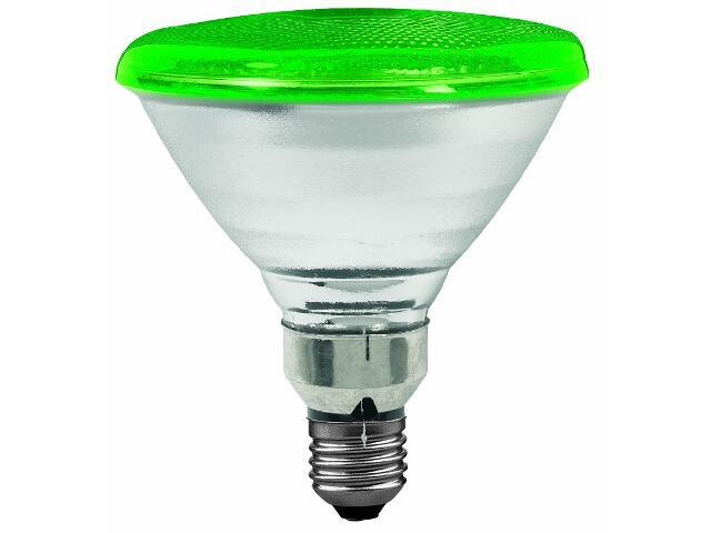 Żarówka halogenowa PAR38 E27 fi 122mm 80W lampa zielona Paulmann