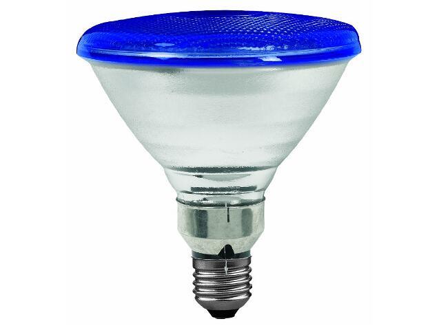 Żarówka halogenowa PAR38 E27 fi 122mm 80W lampa niebieska Paulmann