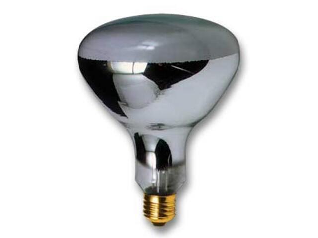 Żarówka rtęciowa HQ-lampa reflektorowa E27 R125 80W Paulmann