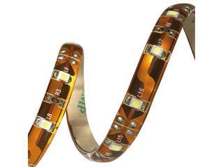 Taśma LED jednokolorowa GRANDO LED-CW 5M Kanlux