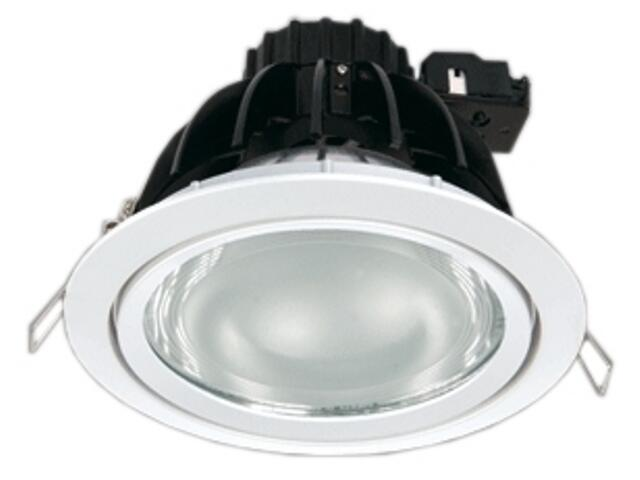 Oprawa downlight metalohalogenkowa 6512 srebrna Brilum