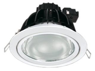 Oprawa downlight metalohalogenkowa 6512 srebrna Brilum