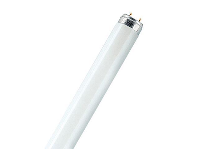 Świetlówka liniowa T8 Natura 36W/76-1 G13 Osram