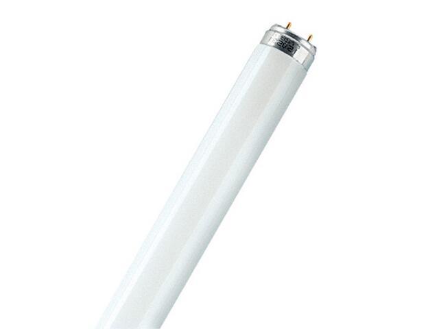 Świetlówka liniowa T8 Natura 15W/76 G13 Osram