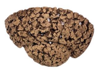 Kinkiet SARA szamot ciemny ażurowy 1074. Cleoni