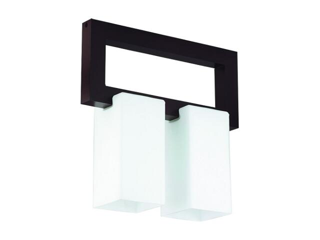 Lampa sufitowa GENUA 2xE14 40W 13142 Alfa