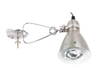 Lampa biurkowa Candero z klipsem max.40W R80 żelazo satynowe Paulmann