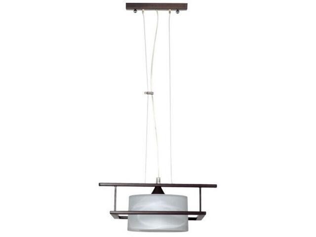 Lampa wisząca TALES 1xE27 60W 490G1 Aldex