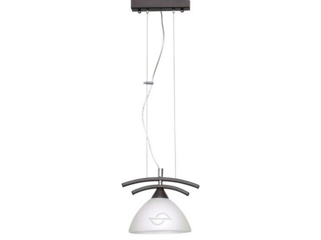 Lampa wisząca TINA 1xE27 60W 504G Aldex