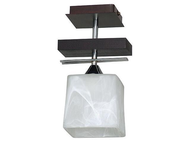 Lampa wisząca FABIO 1xE27 60W 527G Aldex