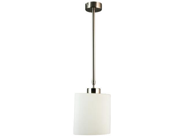 Lampa sufitowa Ellip 1xE27 60W 303401-07 Reality