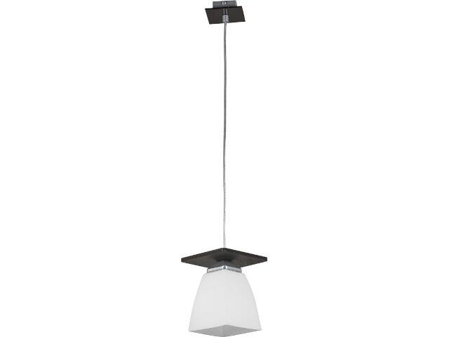 Lampa wisząca Pauza 1xE27 11604 Sigma