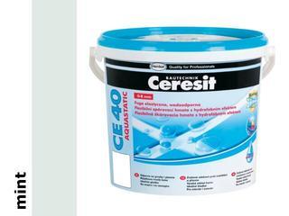 Spoina elastyczna Ceresit CE 40 mint 5kg