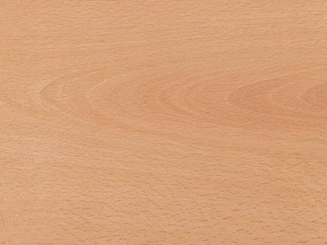 Panele podłogowe Business WV4 H2229 buk exquisit AC5 11mm Egger
