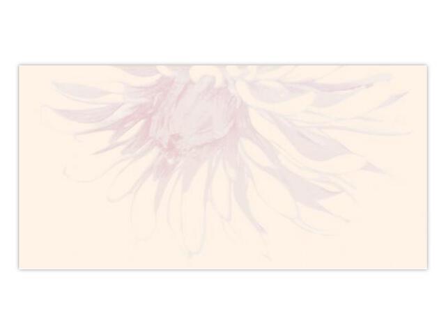 Płytka ścienna Apasionate Bianco inserto drukowane A 30x60 Paradyż