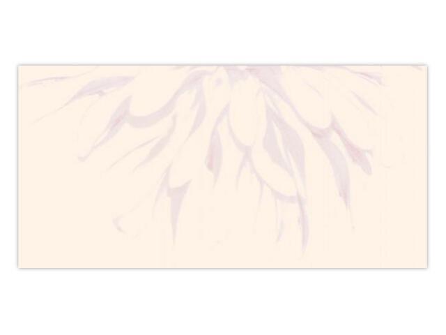 Płytka ścienna Apasionate Bianco inserto drukowane B 30x60 Paradyż