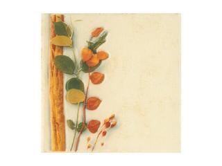 Płytka ścienna Cucina beige motyw foresta pnącze 10x10 Cersanit