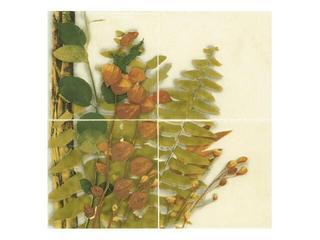 Płytka ścienna Cucina beige kompozycja foresta bukiet 1 20x20 Cersanit