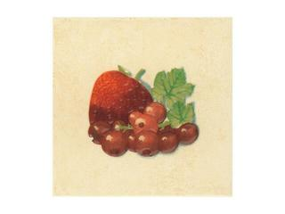 Płytka ścienna Cucina beige motyw fragola porzeczki 10x10 Cersanit
