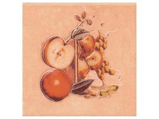 Płytka ścienna Sagra orange motyw owoce 3 10x10 Opoczno