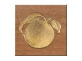 Gres centro Real Cotto orange frutti 1 10,9x10,9 Opoczno
