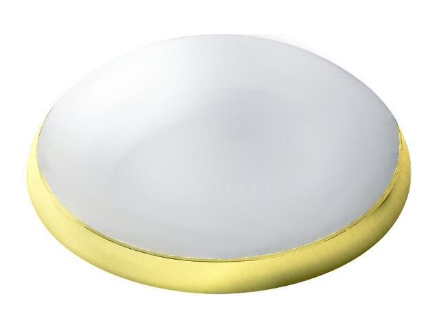 xPlafon przemysłowy hermetyczny CAMEA 1x75W E27 złoty klosz matowy Lena Lighting