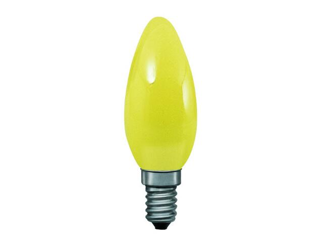 xŻarówka dekoracyjna świecowa, żółta, E14, fi 35mm, 25W Paulmann
