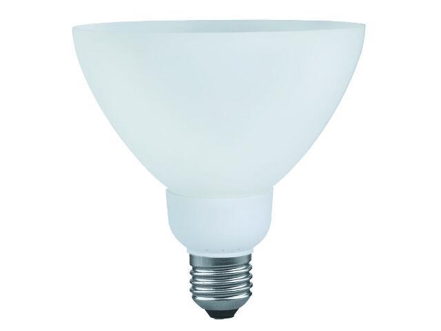 xŚwietlówka energooszczędna DecoShape R4 11W E27 opal Paulmann