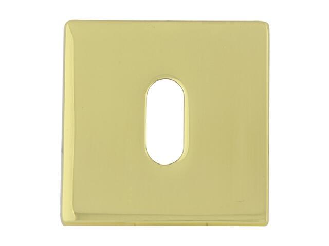 Szyld drzwiowy kwadratowy 546 klucz mosiądz lakierowany/mosiądz satynowany ROSSETTI
