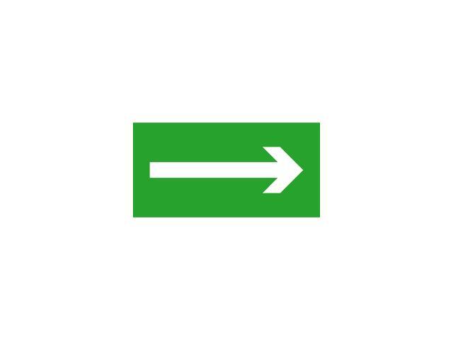 Znak ewakuacyjny EXIT PICTO-ARROW roz. 300x150 Kanlux