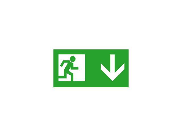 Znak ewakuacyjny EXIT PICTO-DOWN2 roz. 300x150 Kanlux