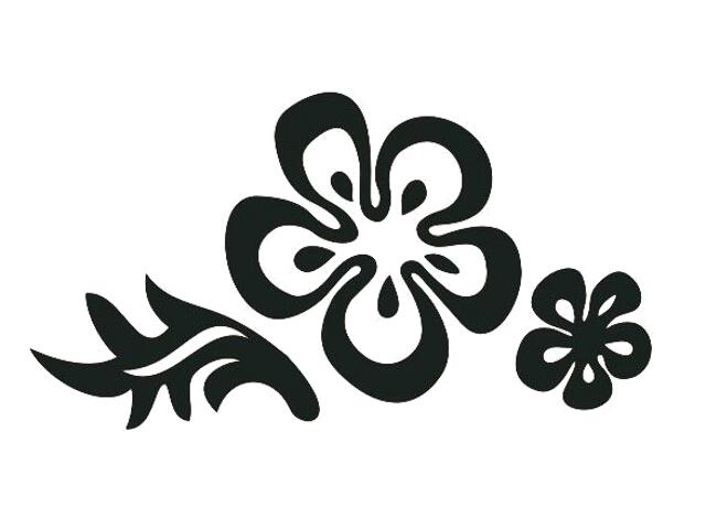 Naklejka dekoracyjna welurowa kwiaty 675025-7 Klimaty Domu