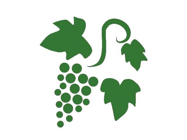 Naklejka dekoracyjna welurowa winogrona 675030-9 Klimaty Domu